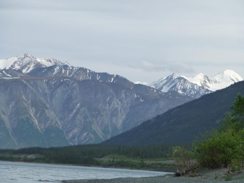 Neben dem Kluane im Hinergrund, der Mt. Kennedy (ca. 4.500 m) und damit der hoechste Berg des Yukon. Ebenfalls in den Elias Mountains steht der Mt. Logan, er ist mit 5.950 der hoechste Berg Kanada s.