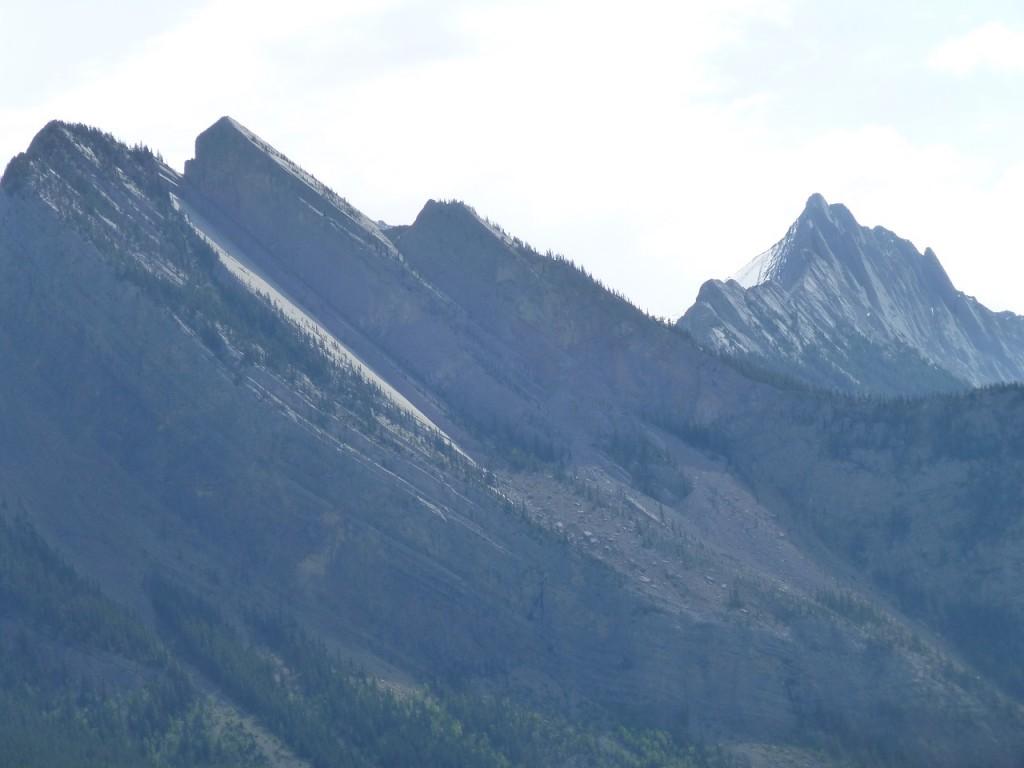3 Bilder der Landschaft zu Beginn des NP Jasper.