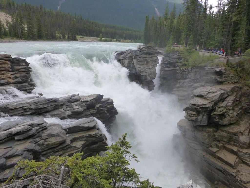 Der Althabasca fliesst durch Jasper - hier die Wasserfaelle.