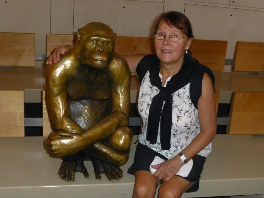 ...aus dem Amercan Indian Museum die Entwicklung der Menschheit.